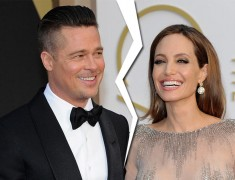 What Celebs Have To Say About Brad And Angelina Divorce