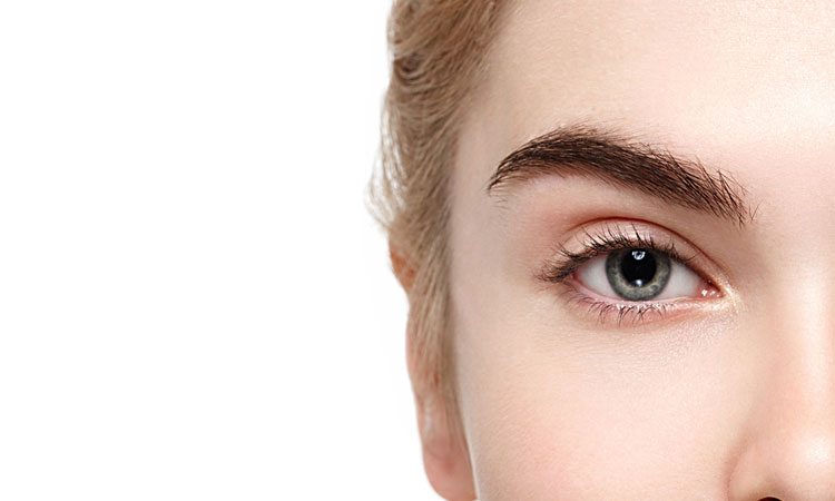 Eyebrow Shapes - Perfect Eyebrow Shape - Eyebrow Styles