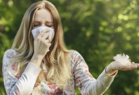 Hay Fever Symptoms and Treatment