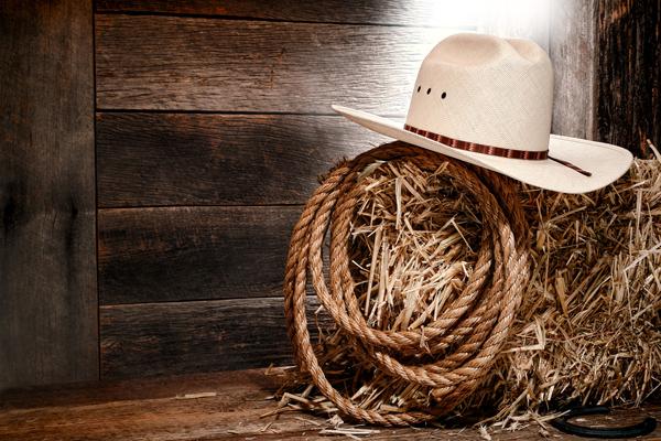cowboy-hat-2